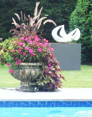 Potted poolside planter mixed